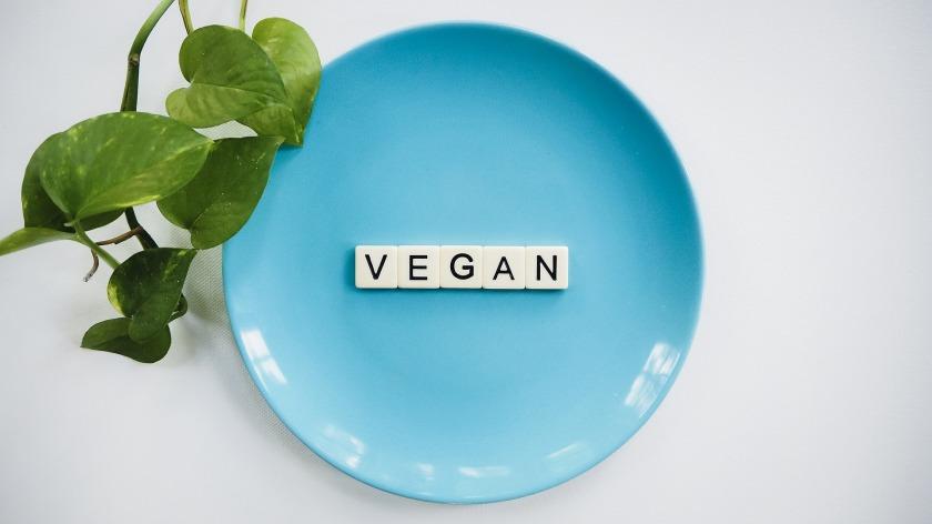 vegan-4232116_1920